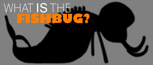 What is the Fishbug??